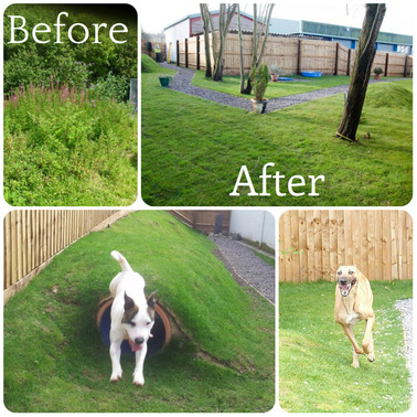 Sensory Garden at Cardiff Dogs Home